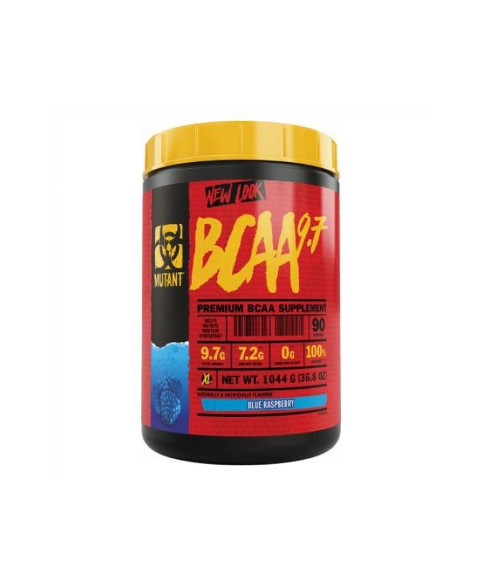 BCAA 9.7 90 serv